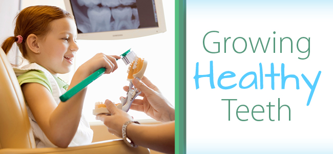 growing healthy teeth